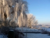 de-linge-winter