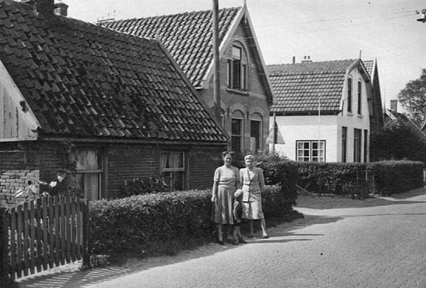 Bergen-NHcorweb
